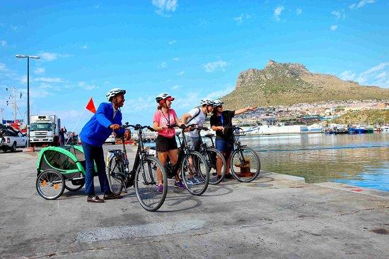 Cape Lion E-Rides