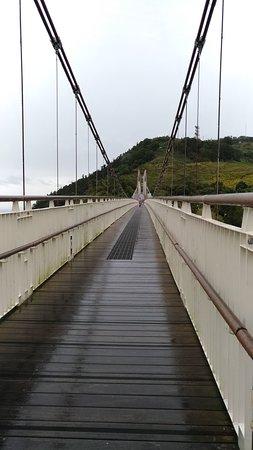 Taiping Suspension Bridge Foto
