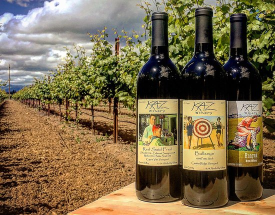 Lakeport, Kaliforniya: Some of our vintage circa 1930's hand-colored wine labels in the vineyard behind the tasting room.