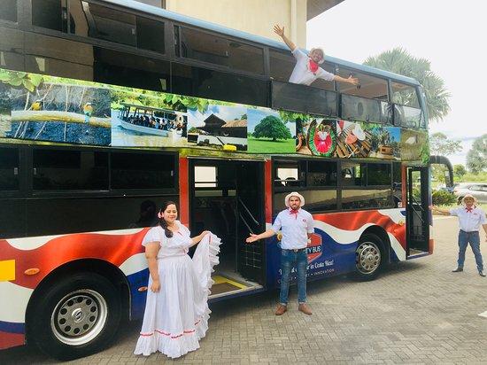 VIP City Bus