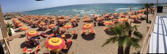 Ristorante del Lido Zelig Beach