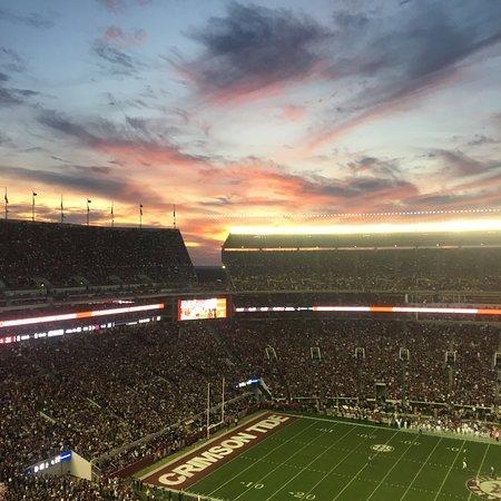 Beautiful campus and Stadium