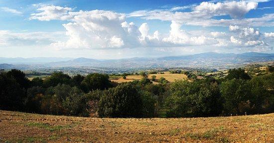 Montorgiali Photo