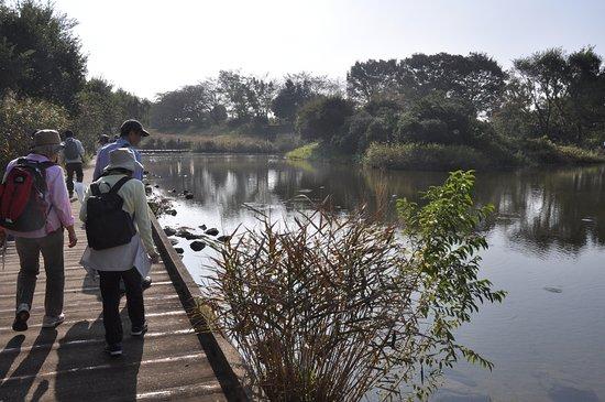 Kiyose, Japan: 木道を歩くのは楽しいですが、冬場は防寒対策を十分にしてください