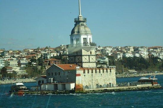 Excursión de un día a Estambul con el...