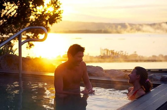 Tauranga Shore Excursion: Rotorua...