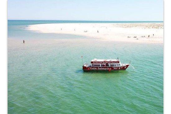 Glass Bottom boat in Ria formosa
