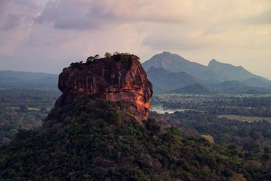 Sigiriya Rock and Countryside from Sigiriya (Private Day Tour): Private Day Tour: Sigiriya Rock, Village Tour and Bird Watching from Sigiriya