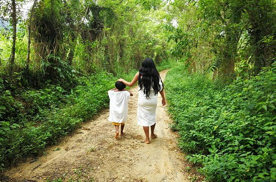 Visita una comunidad indígena de...