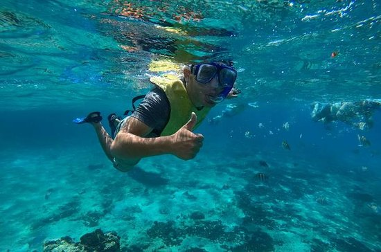 Fantastic Snorkeling and Cozumel...
