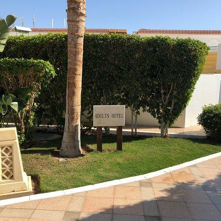 Baron Palms Resort Sharm El Sheikh: Отличное место для отдыха, с отличным выходом на места для снорклинга. Разнообразная еда, коктейли и программы на вечер и днём, и на пляже!