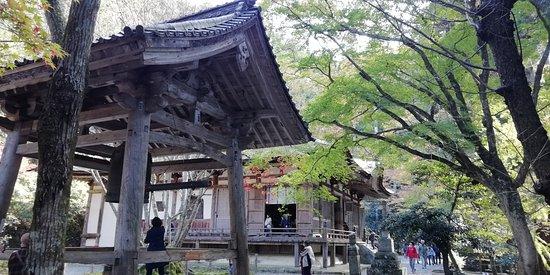Chitoshi Bodaiju