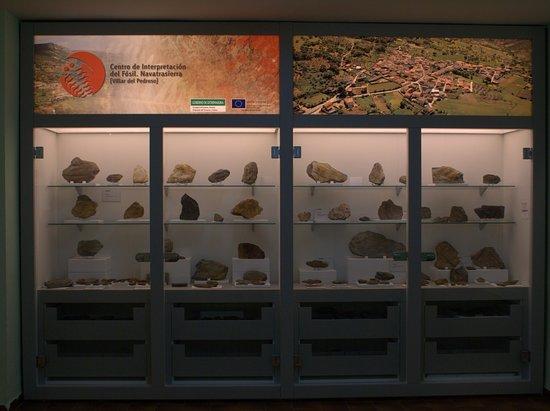 Centro de Interpretacion del Fosil