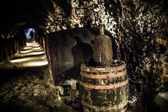Mala Trna, สโลวะเกีย: pivnica - cellar
