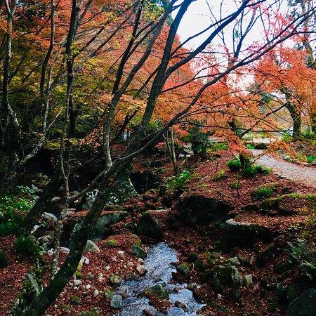 Karatsu Foto
