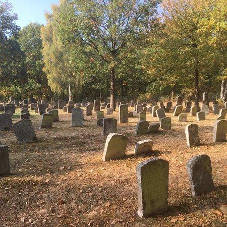 Der judische Friedhof