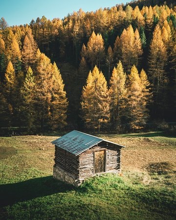Livigno, Italia: Val Federia in autunno