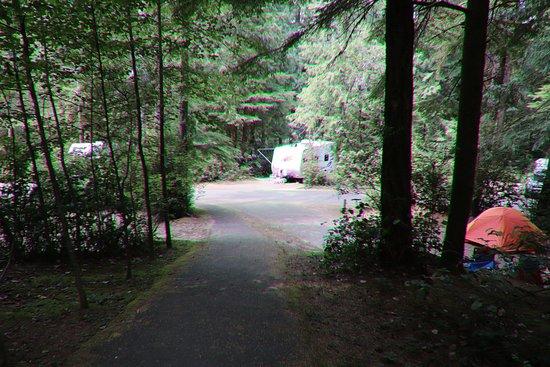 Jessie M. Honeyman Memorial State Park: More RVs and tents