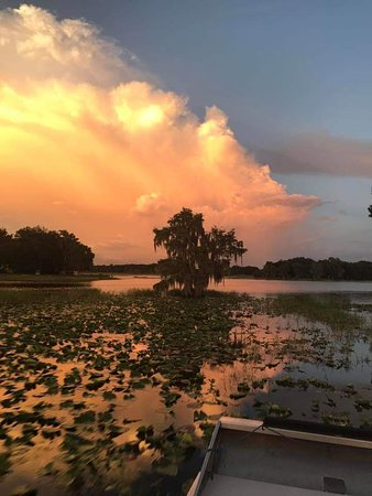All American Airboat Tours