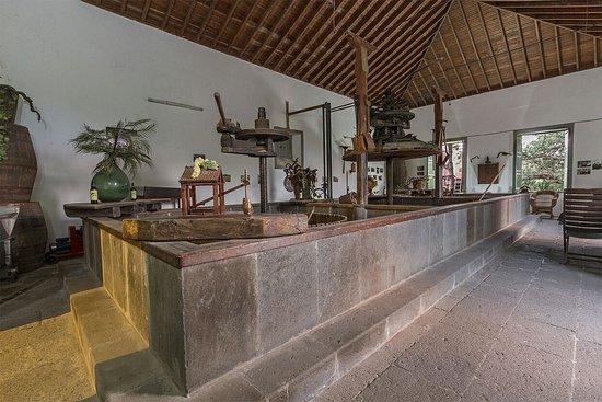 Bodega San Juan - Museo del Vino