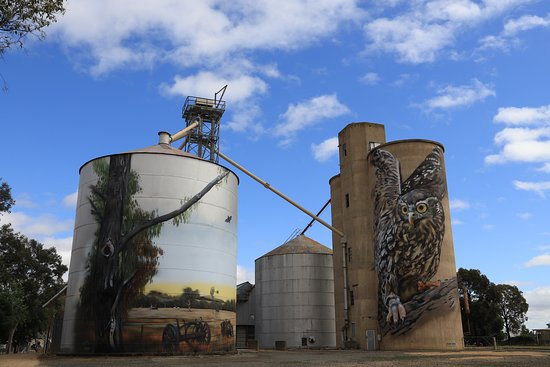 Tungamah Silo Art: Barking Owl at Goorambat
