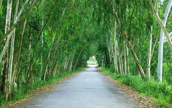 Чау-Док, Вьетнам: Peaceful road