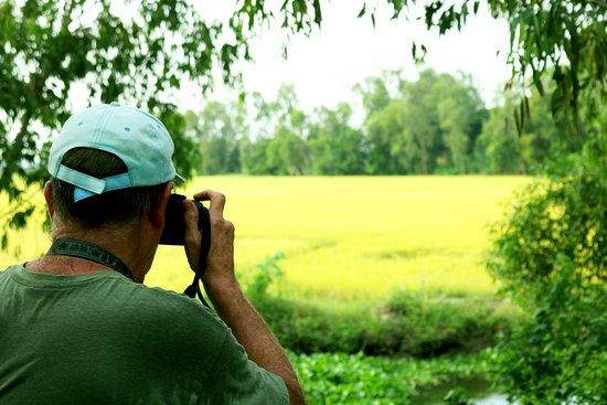 Чау-Док, Вьетнам: looking for a tiny bird over the rice field
