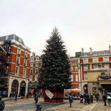 Beautiful Christmas Tree & Holiday Decorations