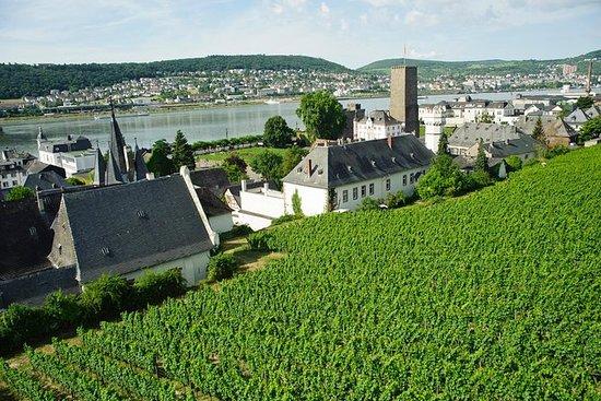 Private Tour: Customizable Rhine...