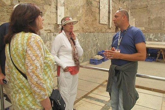 Tour of Ephesus og Terrace Houses of...