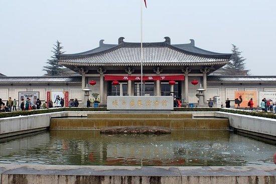 Excursión privada de un día a Xi'an...