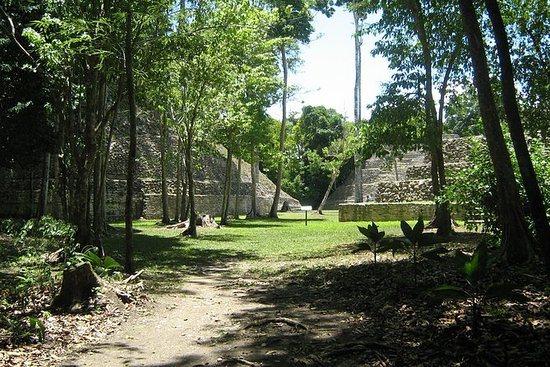 Full-Day Caracol Maya Temple y Pine...
