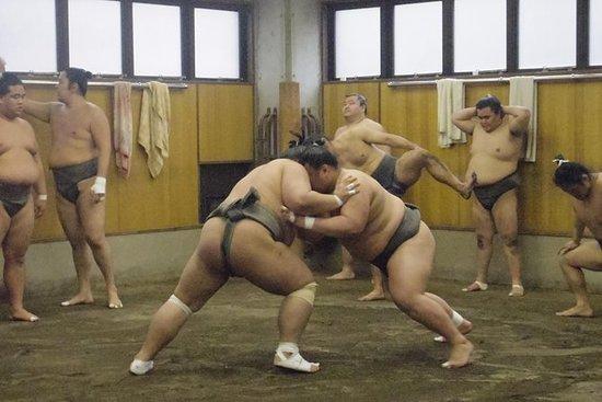 Besøk til Sumo Morning Practice