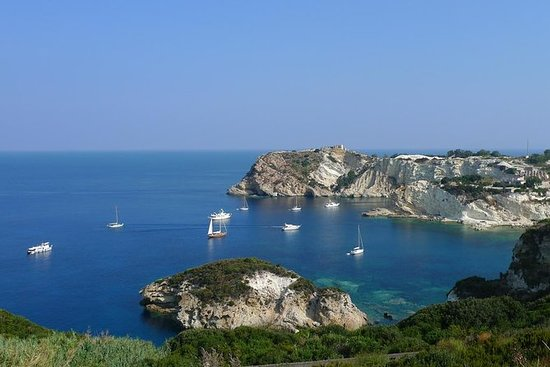 Ponza and Palmarola Boat Tour from...
