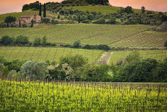 Visita privada del vino Brunello di...