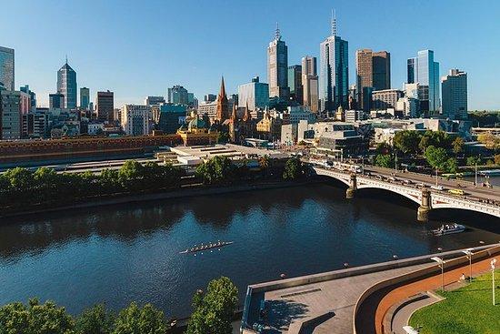 Excursão privada à tarde em Melbourne...