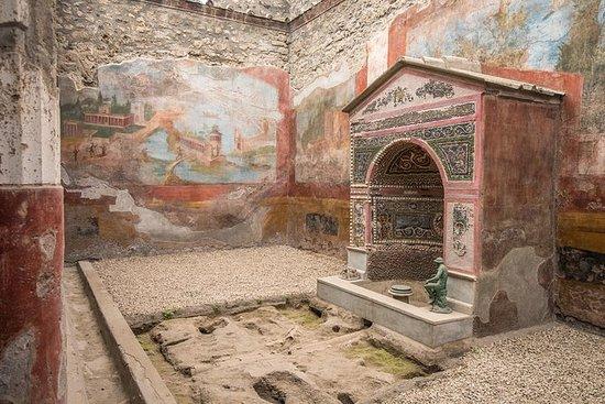 Tagesausflug nach Pompeji und...
