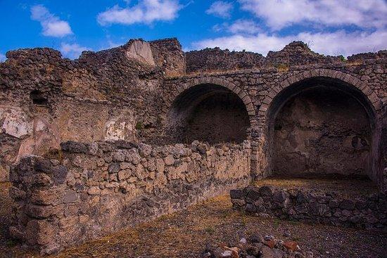 Pompeji-ruinerne og det arkeologiske...