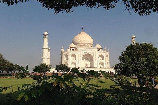 Private Tour : Tajmahal and Agra Fort...