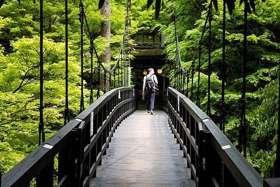 京都高雄山ハイキングツアー