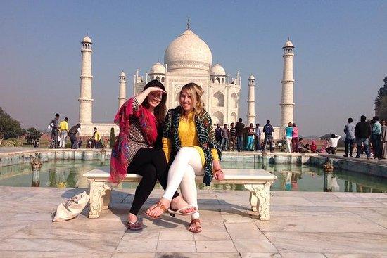 Excursão de 1 dia pelo Taj Mahal e Agra...