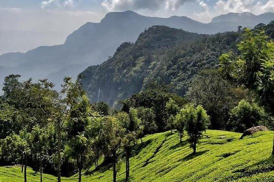 Tur til Coonoor fra Coimbatore