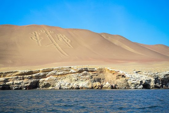 Full day: Ballestas & Nazca Lines