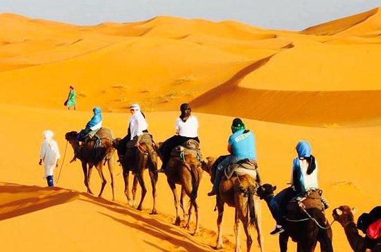 Tour de 3 días por el desierto a Fez...