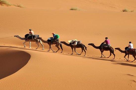 3 dager tur fra Fez til Marrakech...