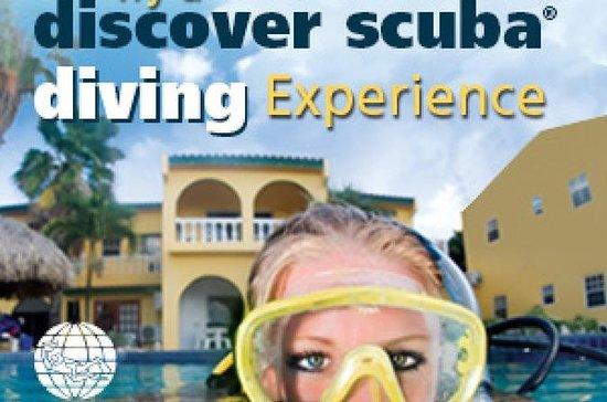 PADI Discover Scuba Diving Course...