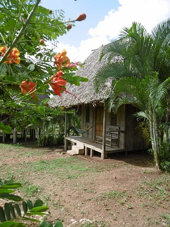 GRAND RIVER LODGE IS A RUSTIC HOSTEL SITUATED ON A WORKING FARM, WITH HORSES, COWS AND A CACAO PLANTATION.  THE SURROUNDING TROPICAL VEGETATION IS HOME TO COLOURFUL BIRDS, AND BUTTERFLIES AS WELL AS  EXOTIC MONKEYS, SLOTHS, CAIMANS AND IGUANAS. GUESTS CAN CANOE AND KAYAK, AS WELL AS RIDE HORSES, PICK FRUITS, AND LEARN ABOUT CHEESE AND CHOCOLATE MAKING. THIS UNIQUE ECO-RESORT CAN BE ACCESSED FROM SAN CARLOS OR EL CASTILLO  BY CAR, BUS, OR THE LOCAL RIVER BOAT .