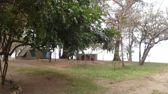 King's Highway Rest Camp: One can pitch your tent under the trees, with a great view of the lake!