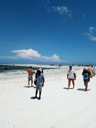 Get our Big Offer with Africa Natural Tours. We specialized in Mountain Kilimanjaro Climbing, wildlife Safaris such us Serengeti, Culture Tourism and beach holiday such us Zanzibar.