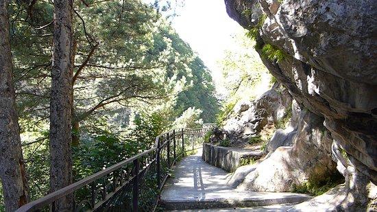 парк диких животных в Куртатинском ущелье